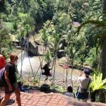 bali-swing-bali-tour-private-driver