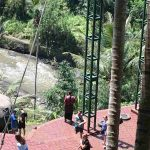 bali-swing-bali-tour-private-tour