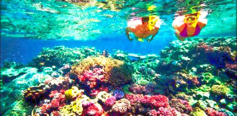 nusa-penida-snorkeling-tour-bali-island