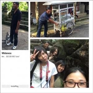 ubud-monkey-forest(1)